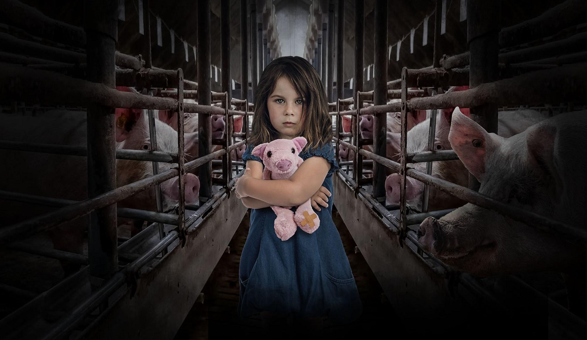 В ЕС запретят держать домашних животных в клетках.Вокруг Света. Украина