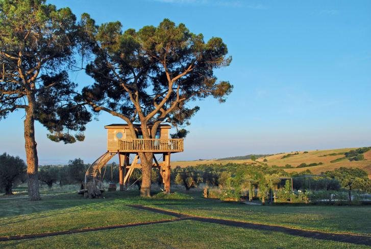Топ-7 лучших домов на деревьях в мире.Вокруг Света. Украина
