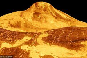 В атмосфере Венеры не обнаружили признаков жизни