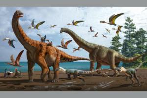 В Китае открыли два новых вида динозавров размером с синего кита