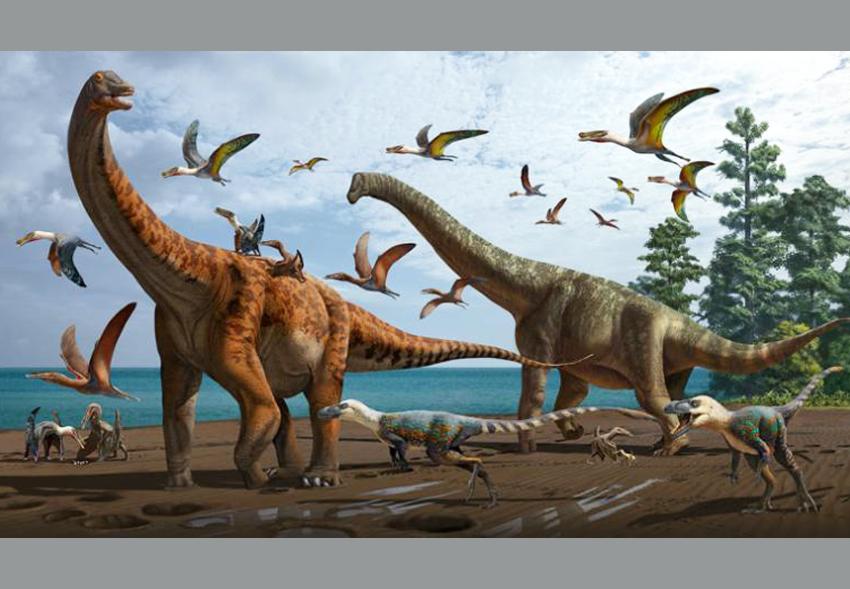 В Китае открыли два новых вида динозавров размером с синего кита.Вокруг Света. Украина
