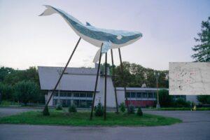 Киевского кита установят на ВДНХ