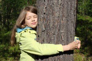 Чемпионат по обниманию деревьев в Лапландии: принять участие может каждый