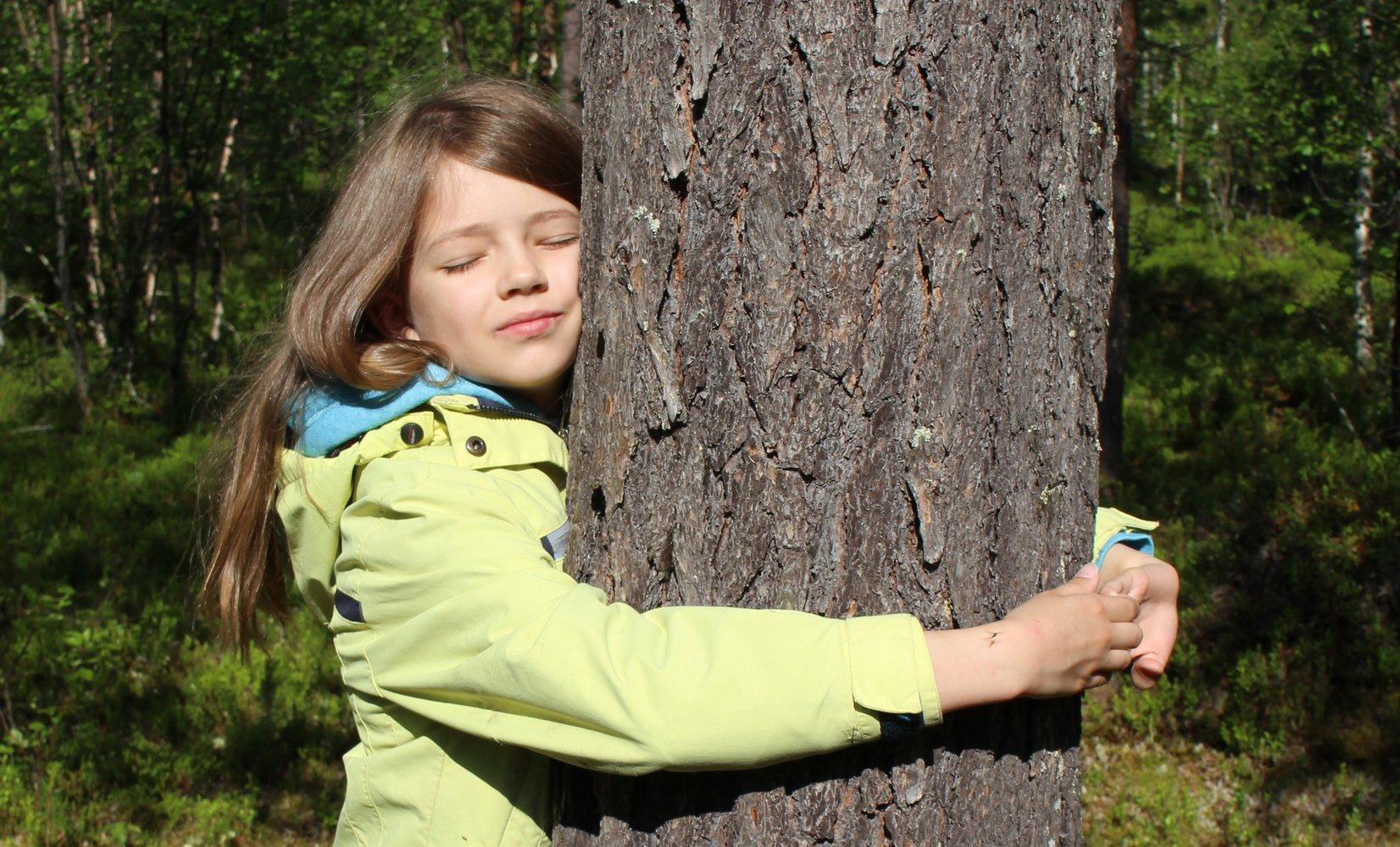 Чемпионат по обниманию деревьев в Лапландии: принять участие может каждый.Вокруг Света. Украина