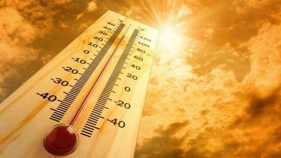 Смертность от аномальной жары выросла в мире на 74 процента.Вокруг Света. Украина