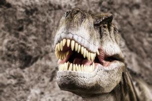 В зубах тираннозавра нашли датчики