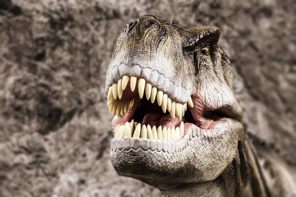 В зубах тираннозавра нашли датчики.Вокруг Света. Украина