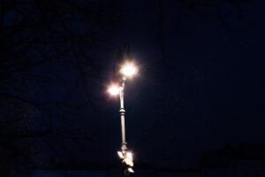 Насекомые толстеют и перестают размножаться из-за уличных фонарей