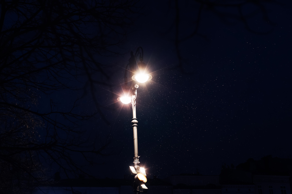 Насекомые толстеют и перестают размножаться из-за уличных фонарей.Вокруг Света. Украина
