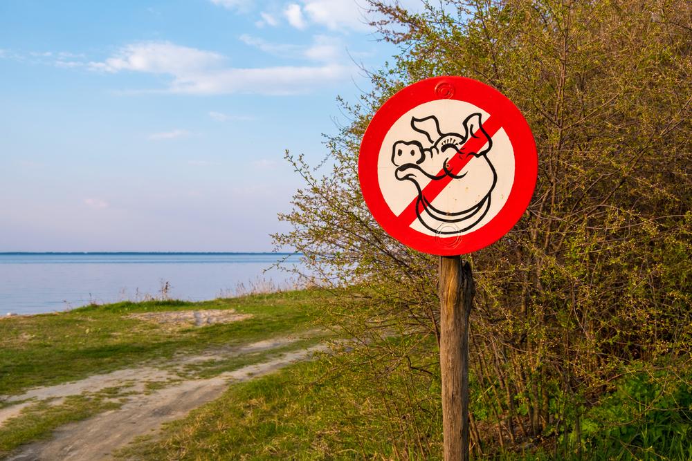 В Украине исчезло около 100 рек за последние 25 лет.Вокруг Света. Украина