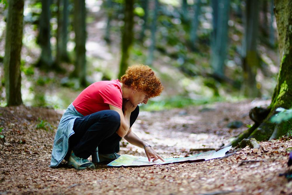 Что делать, если заблудился в лесу: советы экспертов