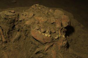 В пещере на индонезийском острове найдены останки человека неизвестного ранее вида