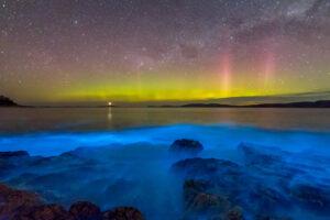 На фото со спутников океаны светятся благодаря люминесцирующим бактериям