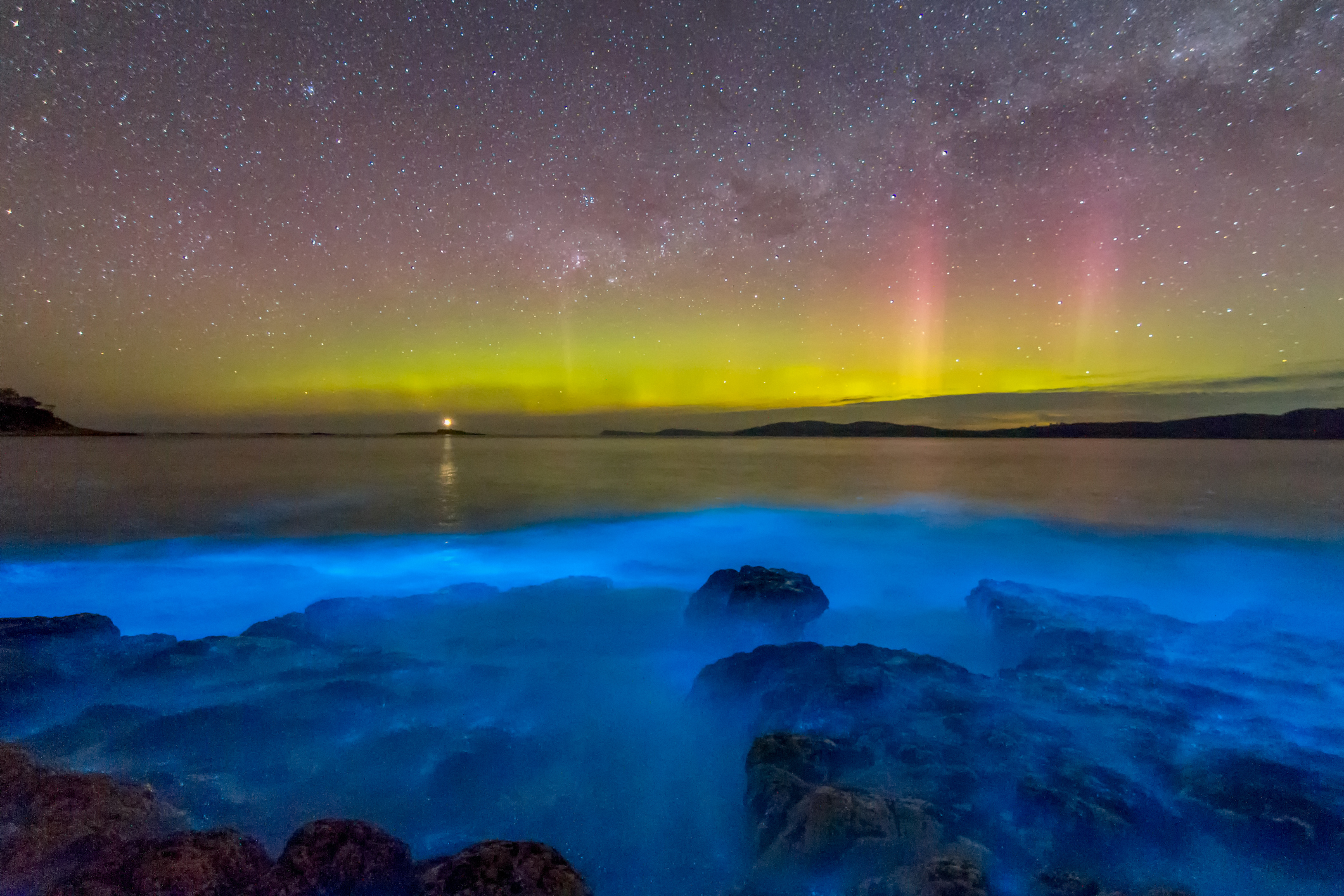 На фото со спутников океаны светятся благодаря люминесцирующим бактериям.Вокруг Света. Украина
