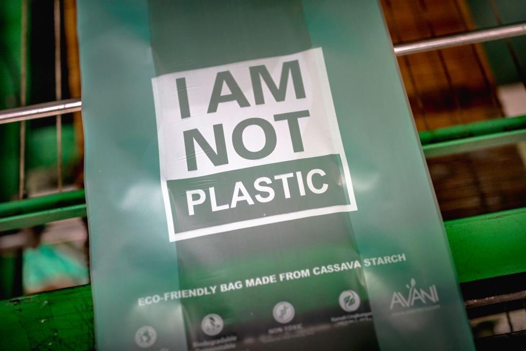 Запрет одноразового пластика в Украине: из чего делают биоразлагаемые пакеты и как их правильно утилизировать?.Вокруг Света. Украина