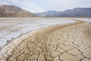 ООН признала глобальное потепление единственной причиной голода на Мадагаскаре в 2021 году