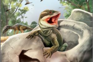 Палеобиологи нашли древнейшего предка змей и ящериц