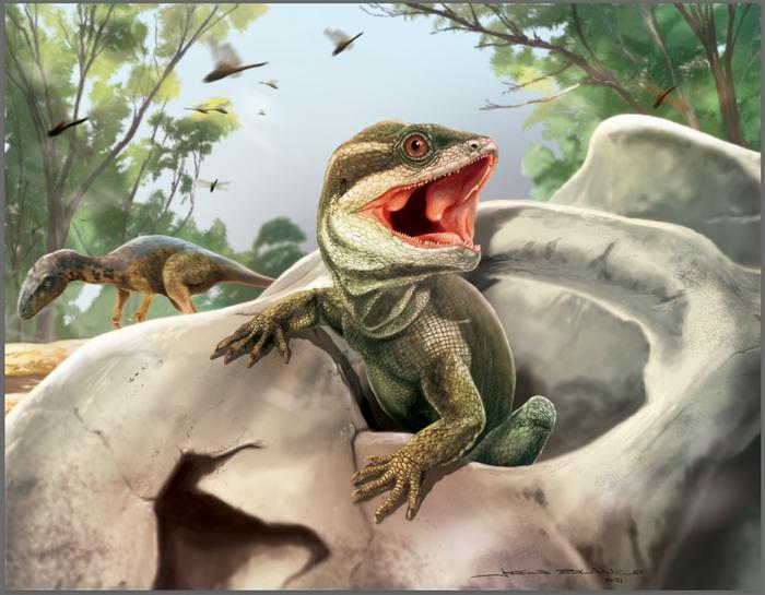 Палеобиологи нашли древнейшего предка змей и ящериц.Вокруг Света. Украина
