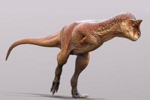 Чешуйчатый и рогатый: палеонтологи описали необычного хищного динозавра