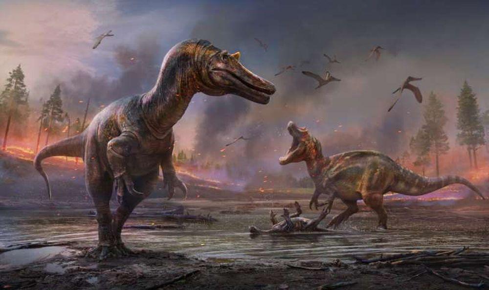 На острове Уайт найдены останки крупных хищных динозавров двух новых видов.Вокруг Света. Украина