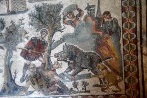 Рим страдает от нашествия диких кабанов