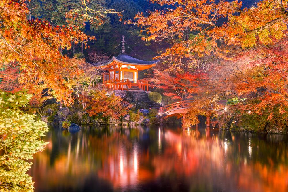 Сакура наоборот: где на Востоке любуются осенью.Вокруг Света. Украина