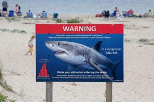 В Австралии опробовали устройство для отпугивания акул. Число нападений сократилось почти на 70%