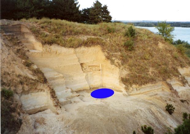 Украинские археологи раскопали дом возрастом более 30 тысяч лет.Вокруг Света. Украина