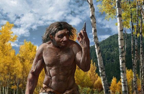 Неандертальцы владели сложными техниками изготовления орудий: исследователи