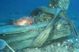 На дне моря в Италии нашли два тарана времен Пунических войн