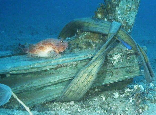 На дне моря в Италии нашли два тарана времен Пунических войн.Вокруг Света. Украина