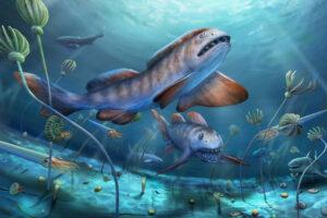В Китае обнаружили древнюю акулу с зубами в форме лепестков