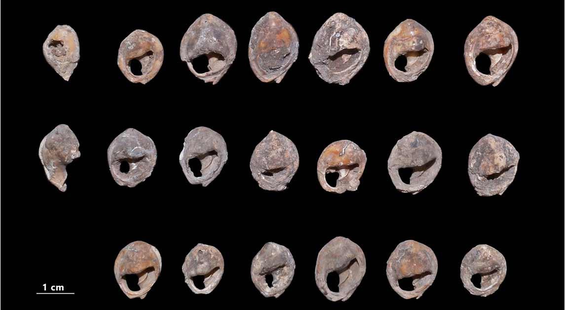 В Марокко нашли самое древнее в мире украшение возрастом 150 тысяч лет.Вокруг Света. Украина