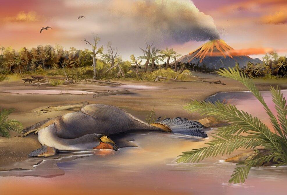 Палеонтологи обнаружили клетки динозавра возрастом 125 миллионов лет.Вокруг Света. Украина