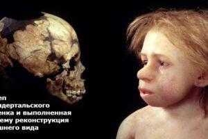 Палеоантропологи нашли в Иране молочный зуб неандертальца