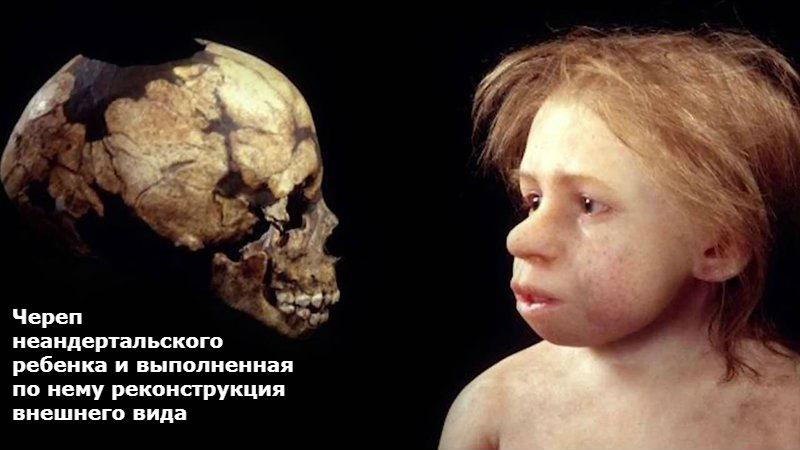 Палеоантропологи нашли в Иране молочный зуб неандертальца.Вокруг Света. Украина