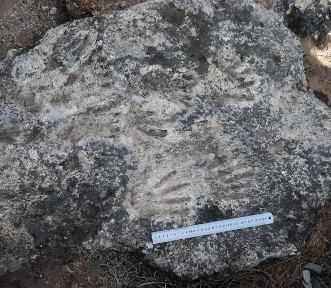 В Тибете нашли древнейшее в мире произведение искусства возрастом около 200 тысяч лет.Вокруг Света. Украина