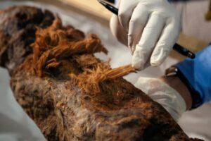 Египтяне начали мумифицировать умерших на 1000 лет раньше, чем считалось