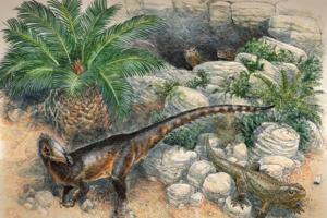 Островной карлик: палеонтологи описали новый вид мелкого хищного динозавра