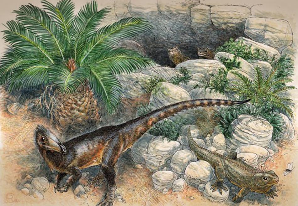 Островной карлик: палеонтологи описали новый вид мелкого хищного динозавра.Вокруг Света. Украина