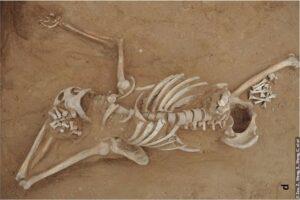 Убийство и разграбление могил: археологи раскрыли дело 1300-летней давности