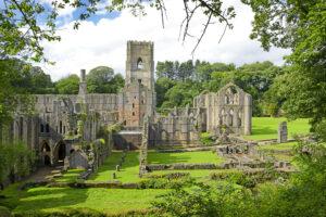 В Англии на территории средневекового аббатства нашли крупный кожевенный завод
