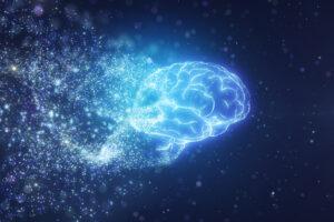 Антропологи объяснили, почему мозг современного человека уменьшился с развитием цивилизации