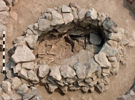 В Армении нашли единственное на Кавказе ритуальное захоронение лошади.Вокруг Света. Украина